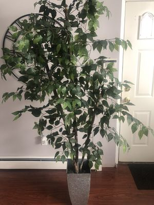 6ft Fake Tree/Plant Decor for Sale in Fair Lawn, NJ
