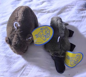 2 Collectible Aussie Plush Toys Wombat & Platypus for Sale in Sacramento, CA