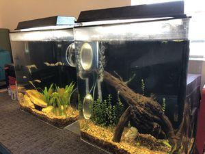 65 gallon aquarium for Sale in Romoland, CA