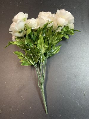 13 White Ranunculus Bushes for Sale in Nashville, TN