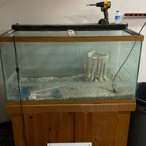 Fish tank w stand for Sale in Park Ridge, IL