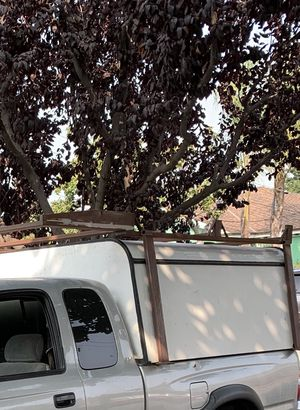 Camper and rack for Sale in San Jose, CA