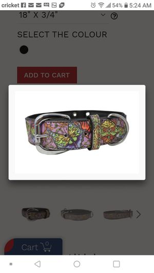 2 dog collars both for this price for Sale in Smyrna, TN