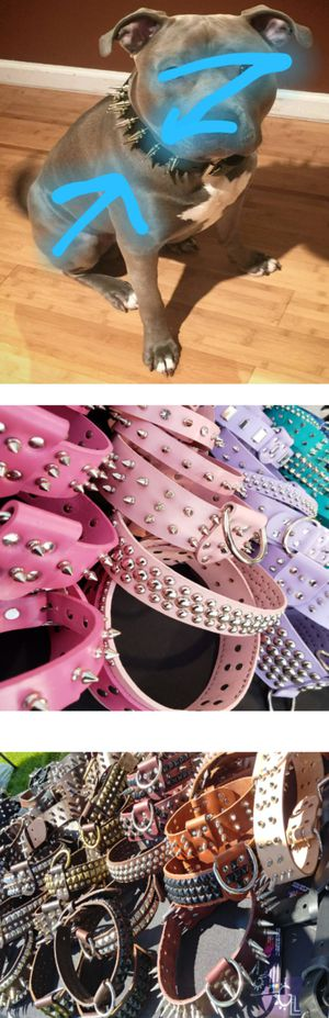 Collars for Sale in Bloomington, CA
