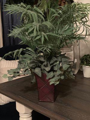 Silk plant for Sale in Surprise, AZ
