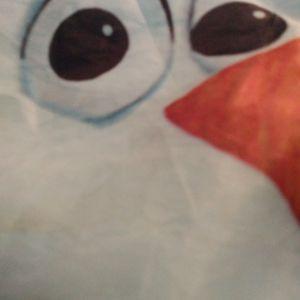 Frozen Sleeping Bag for Sale in Moore, OK