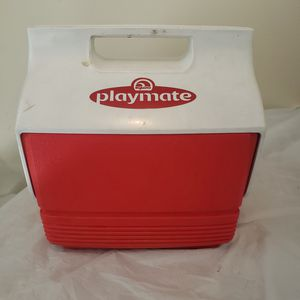 Mini 4 Qt. Igloo Cooler for Sale in Taylor, MI
