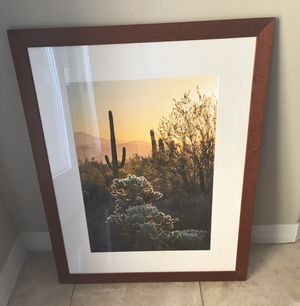 Desert Photo ( Professional Photograph ) for Sale in Fountain Hills, AZ