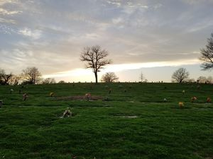 Burial Plot for Sale in Melrose, TN