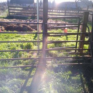 10' Gate for Sale in Oregon City, OR