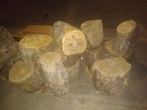 Free firewood for Sale in Stockton, CA