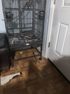 Bird cage for Sale in Chamblee, GA