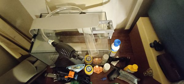 5 gallon fish tank set up - just add water & fish!