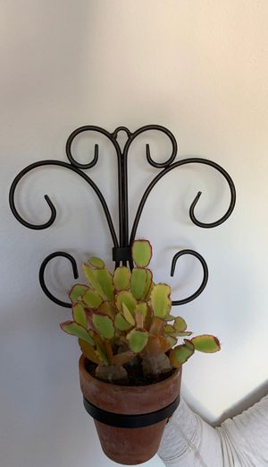 Iron plant holder for Sale in Carlsbad, CA