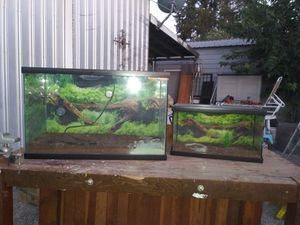 2 REPTILE TANKS for Sale in French Camp, CA
