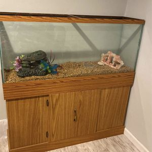 Fish Tank 55 Gallons for Sale in Kent, WA