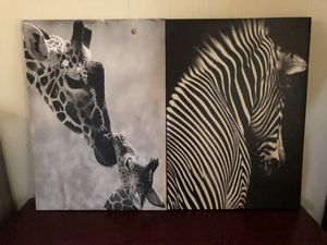 Pictures of a zebra and giraffes for Sale in Hemet, CA
