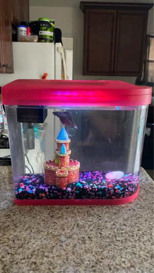 2 gallon Betta fish tank aquarium for Sale in Pomona, CA