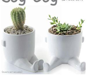 Brand new Pair of Small Succulent Planter Pots Indoor with Legs Mini Room Decor Flower Indoor Plants for Sale in Kirkland, WA