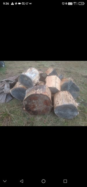 Lots of free cedar rounds !!!!!; FREE for Sale in Lake Stevens, WA