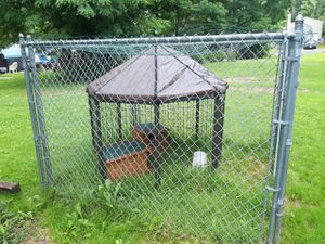 CHAIN LINK FENCED IN PEN for Sale in Ravenna, OH