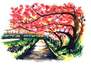 Original Artwork Priced Separately for Sale in Gambrills, MD