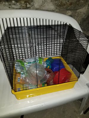 Full hampster set up for Sale in Fall River, MA