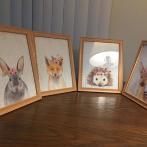 Animal pictures for Sale in Warrenville, IL