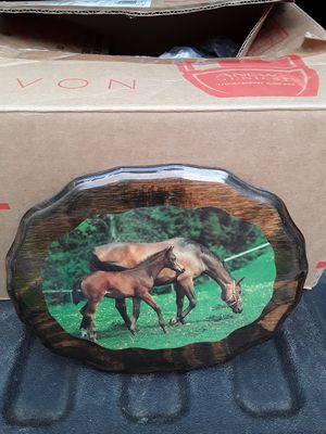 Horse picture for Sale in Linden, PA