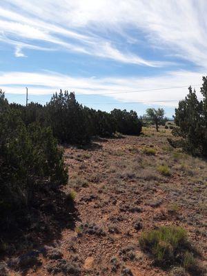 LAND FOR SALE for Sale in Phoenix, AZ