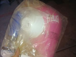 New Youth Everlast Punching bag & Speed bag for Sale in Phoenix, AZ