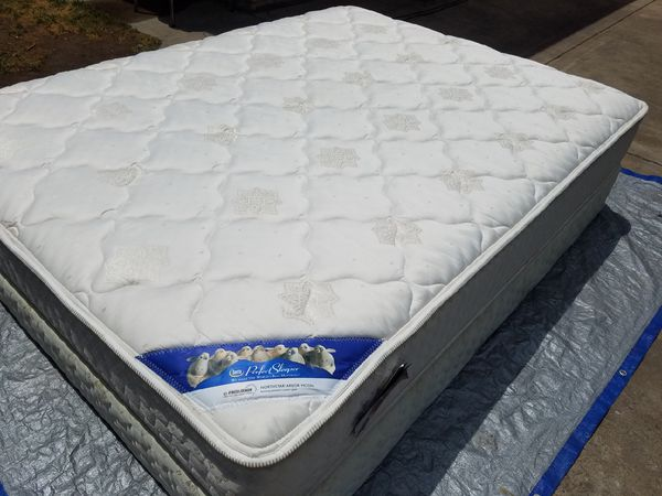 Queen Serta Perfect Sleeper Northstar Arbor Moon Mattress And Box
