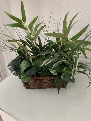 Plant imitation with pot for Sale in North Miami, FL