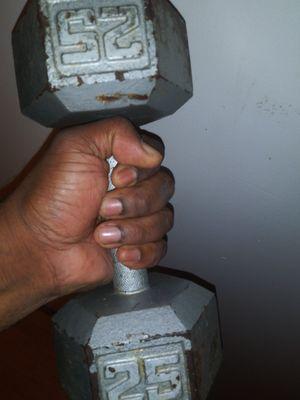 25 pound barbell for Sale in Atlanta, GA