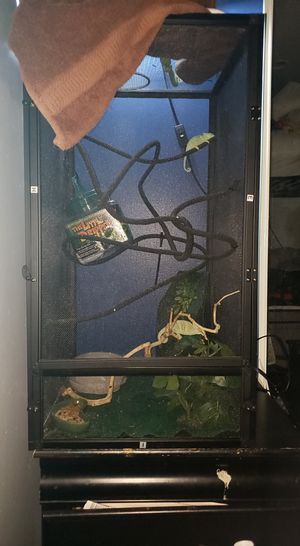 Chameleon cage with everything including 2 Chameleon for Sale in East Los Angeles, CA