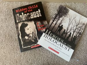 holocaust book bundle for Sale in Dublin, CA