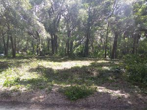 Land for Sale in Tampa, FL