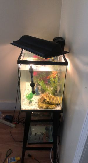 20 gallon tank with filter decor and extras for Sale in Lilburn, GA