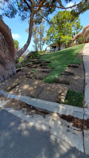 WE RENEW YOUR LAWN for Sale in Anaheim, CA