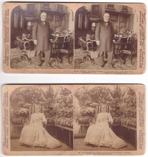 2 Antique Stereoview cards President McKinley and Mrs McKinley for Sale in Prescott, AZ