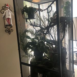 Jackson chameleon cage for Sale in Temecula, CA