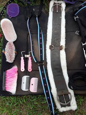 Horse accessories extra or can go with saddle for Sale in Zebulon, NC