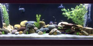 Tons of aquarium/fish tank equipment/supplies! for Sale in National City, CA