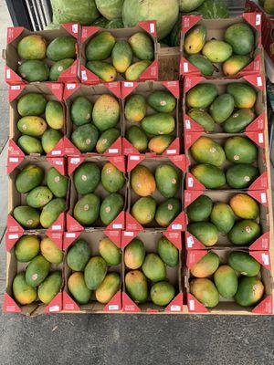 Mangos 🥭 4905 yosmite Blvd for Sale in Hughson, CA