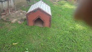 Leonard utility building/ dog house for Sale in Raleigh, NC