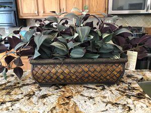 Plant Decor for Sale in Alexandria, VA
