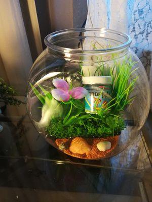 Fish bowl for Sale in Pico Rivera, CA