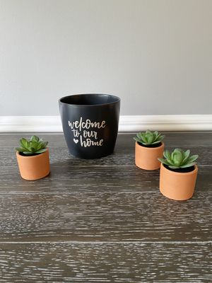 """5"""" cup with 3 Mini Tabletop Succulent for Sale in Nolensville, TN"""