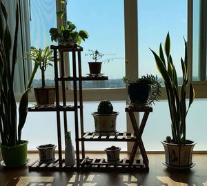 Wooden Plant Stand Flower Pot Shelf Organizer Bonsai Stand Indoor Outdoor Plant Stand for Garden Patio Balcony Living Room Bathroom Office for Sale in City of Industry, CA