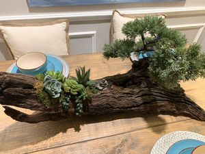 Driftwood-Faux Bonsai and Succulent Centerpiece for Sale in Tampa, FL